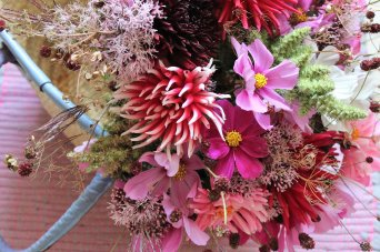 des fleurs champêtres et naturelles pour un bouquet poétique